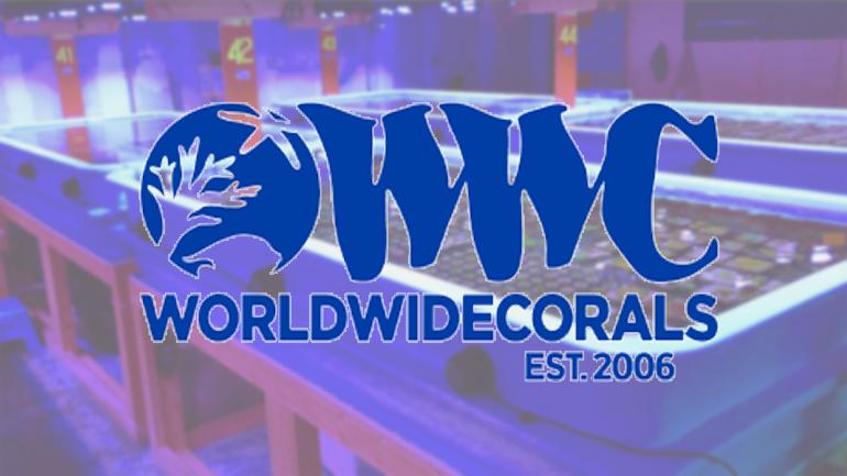 WWC_button